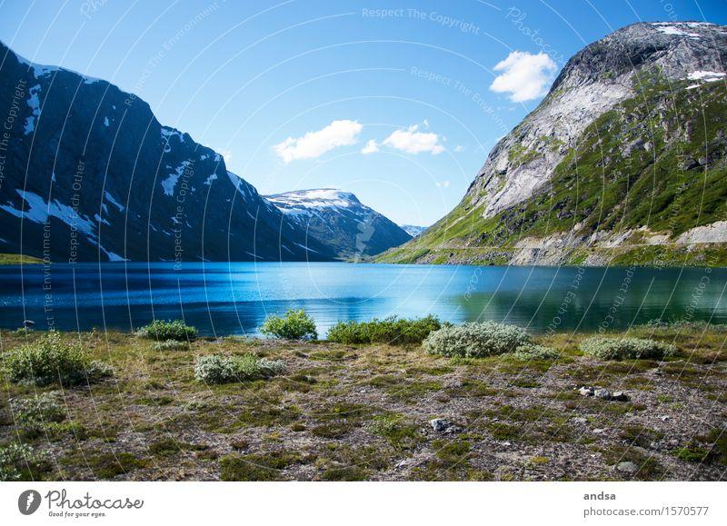 Norwegen Natur Sommer Landschaft Wolken Ferne Berge u. Gebirge Herbst Gras Schnee Freiheit See Felsen Ausflug wandern Sträucher Schönes Wetter