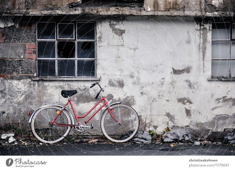 Rotes Fahrrad, graue Wand. Trist und kaputt. Damenfahrrad Hollandrad Industrieanlage Mauer Fenster Fahrradfahren Stein Beton Glas Metall Rost alt Armut dreckig
