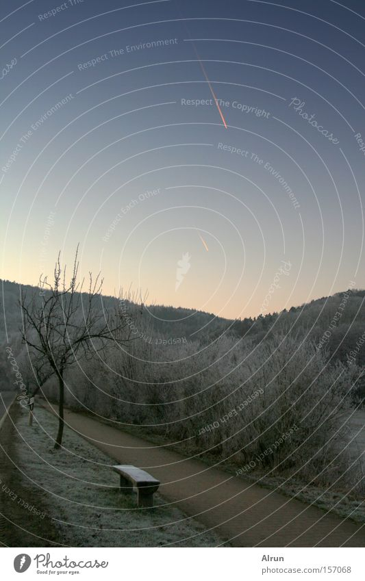 Sternschnuppe Bank Baum Wege & Pfade Himmel Wald Winter kalt gefroren blau grau Eis Schnee