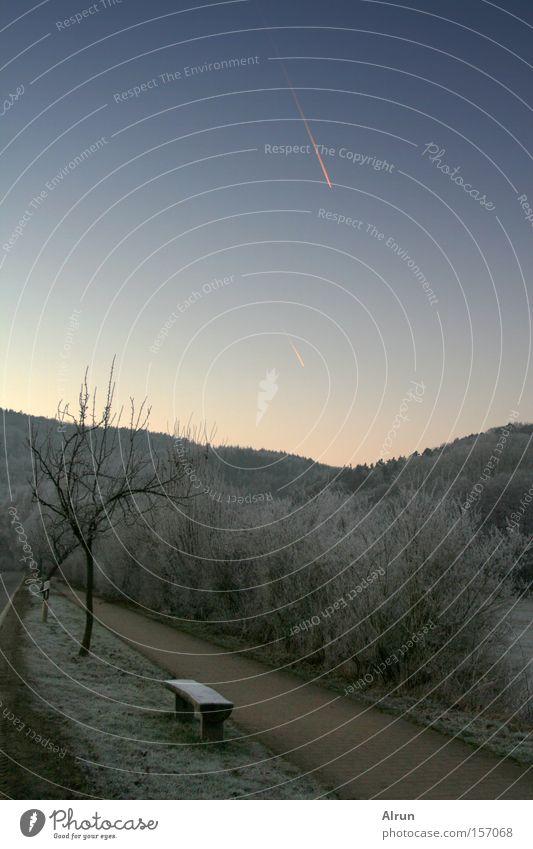 Sternschnuppe Himmel Baum blau Winter Wald kalt Schnee grau Wege & Pfade Eis Bank gefroren