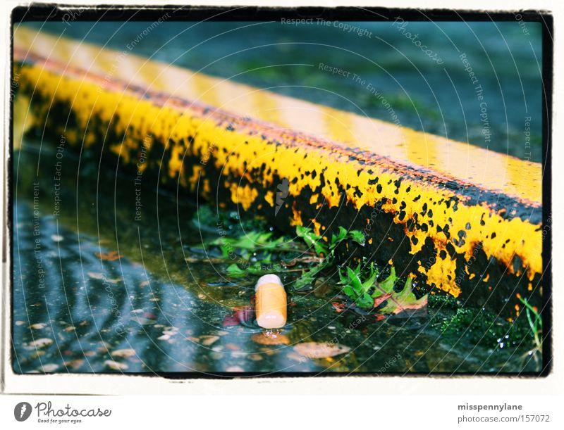 stadt Zigarette Regen Wasser gelb Jungpflanze Pfütze Straße Rhein Düsseldorf Zigarettenstummel