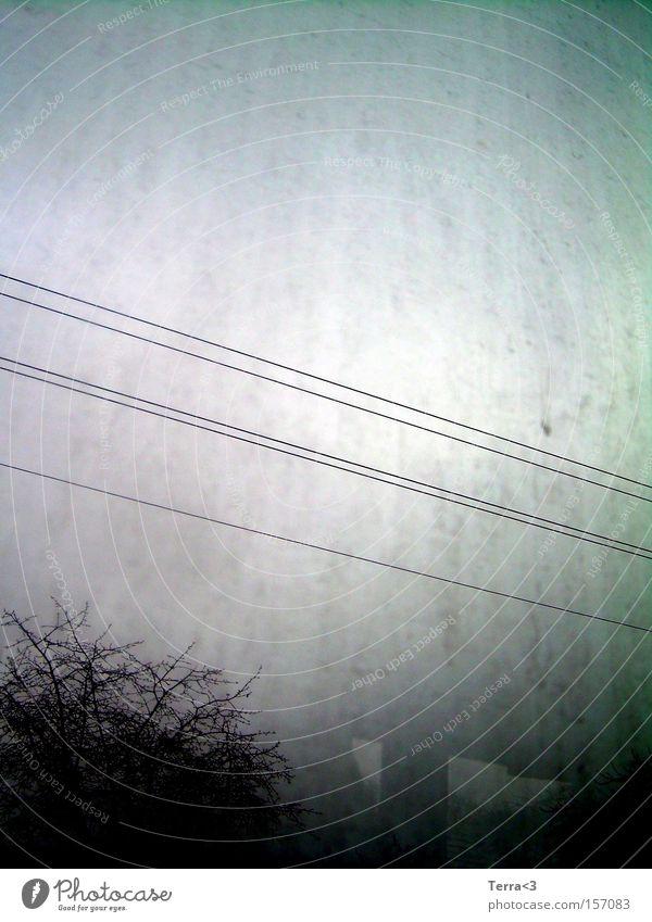 # dreckig dunkel trüb Trauer Kabel Stahlkabel Baum schwarz Himmel trist Tod Wassertropfen Tropfen Verzweiflung Winter Wetter Traurigkeit leer