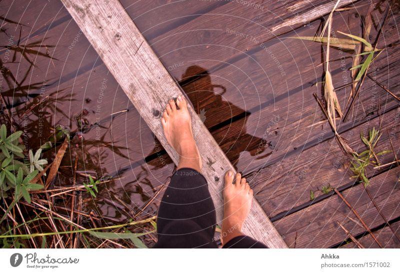 Wassergeist Mensch Natur Jugendliche Junge Frau Leben Holz braun Fuß rosa Zufriedenheit frisch Kraft Lebensfreude Brücke Sicherheit