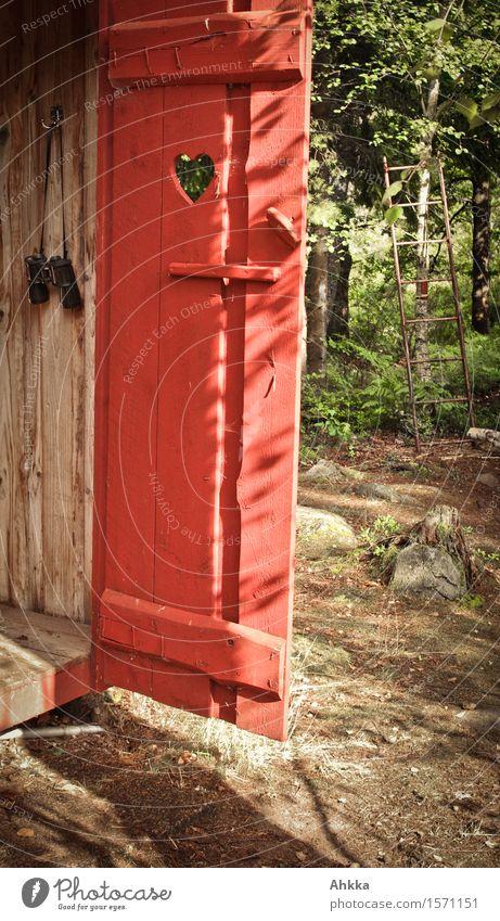 Ausguck Natur Sommer Schönes Wetter Baum Tür Fernglas Holz Herz grün rot Fröhlichkeit Leidenschaft Warmherzigkeit Wachsamkeit ruhig Pause Ziel Toilette