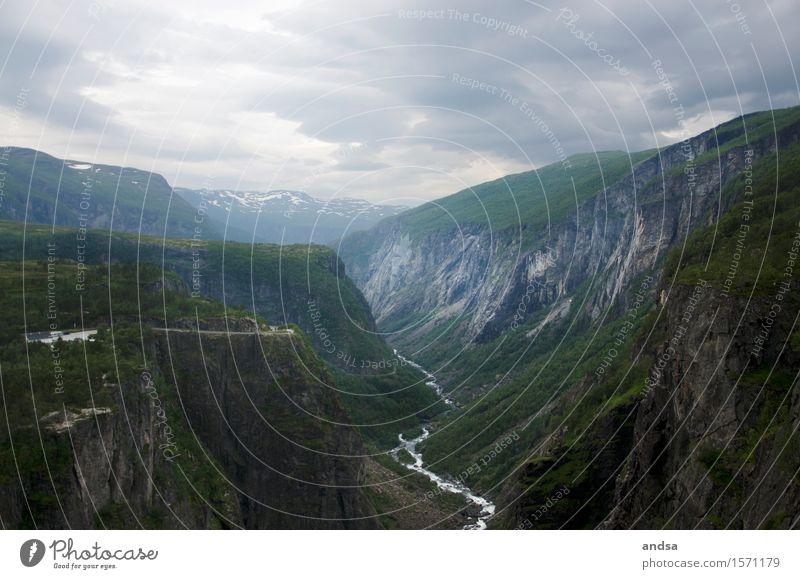 Vøringsfossen Ferien & Urlaub & Reisen Tourismus Ausflug Abenteuer Ferne Freiheit Berge u. Gebirge wandern Norwegen Landschaft schlechtes Wetter Gras Sträucher