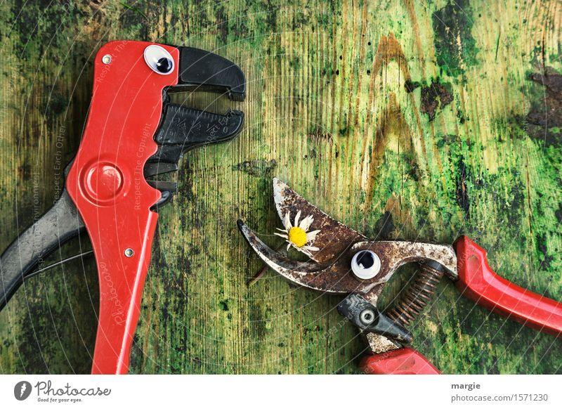 Ich hab dich lieb! Zwei Zangen mit Augen und ein Gänseblümchen auf einem alten Holztisch Arbeit & Erwerbstätigkeit Handwerker Gartenarbeit Arbeitsplatz