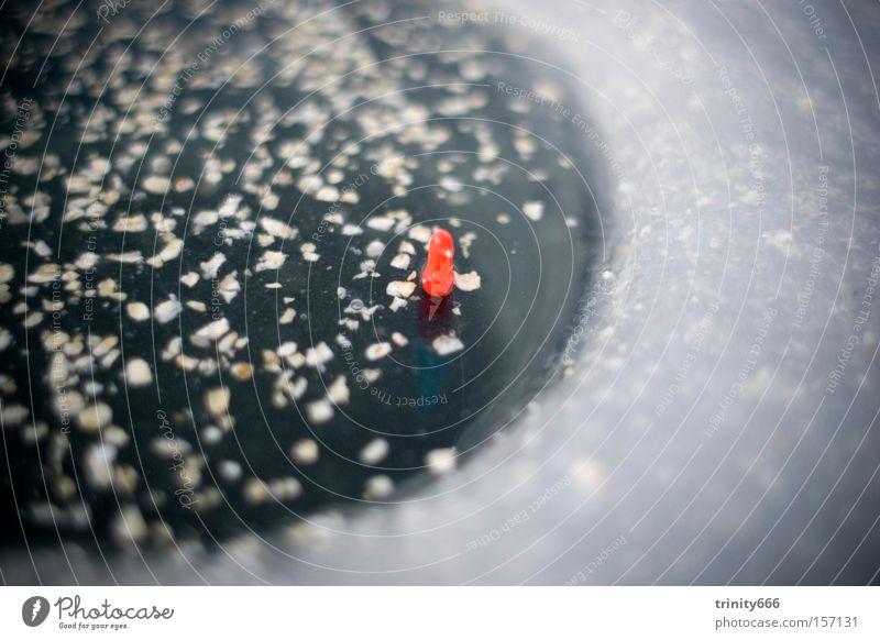 Die Pose Körperhaltung Wasser Eisangeln Angeln Angelrute Mitte rot kalt Winter trüb grau Freizeit & Hobby Eisloch vignette
