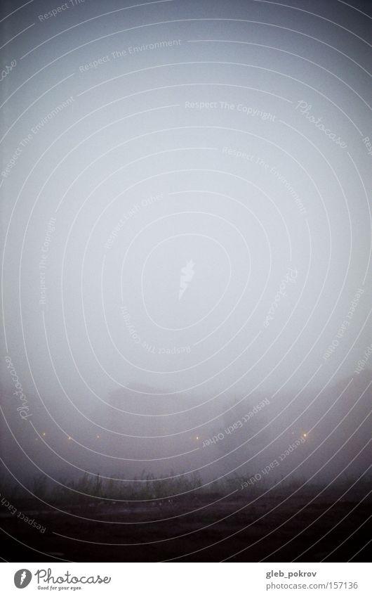 Licht. Nebel Umnebelung Sibirien Reflexion & Spiegelung Blume Blüte grün Himmel weiß Straße Lichteffekt Russland Morgen Haus Jahreszeiten Wetter