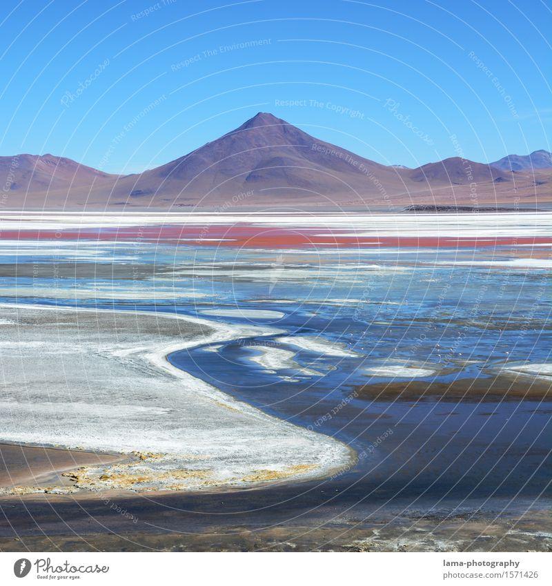 Laguna Colorada Ferien & Urlaub & Reisen Ausflug Freiheit Natur Landschaft Wasser Berge u. Gebirge Vulkan See Lagune Salar de Uyuni Potosi Bolivien Südamerika