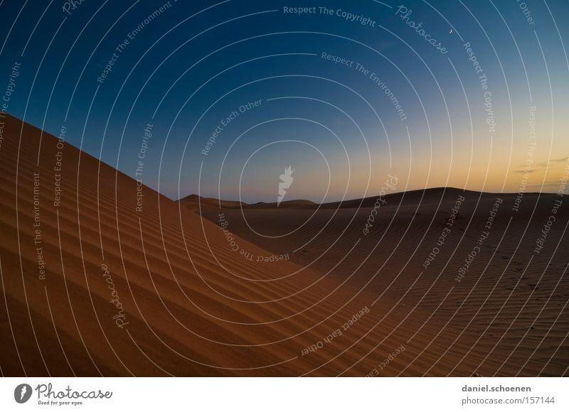 klein Daniel allein in der Wüste Sand Düne rot Abend Nacht blau Himmel trocken Wärme Wind Naher und Mittlerer Osten Expedition Erde Ferien & Urlaub & Reisen