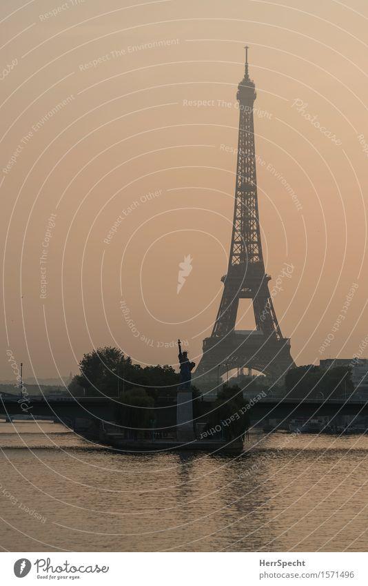 Statue of Liberty außergewöhnlich grau Zusammensein Brücke Turm Fluss Wahrzeichen Denkmal Flussufer Hauptstadt Sehenswürdigkeit Paris Skulptur Stadtrand