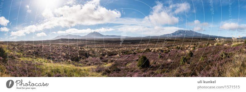 Tongariro National Park (Ngauruhoe und Ruapehu) Himmel Natur Pflanze blau grün Sommer Baum Blume Erholung Landschaft Wolken Berge u. Gebirge Gras braun Felsen