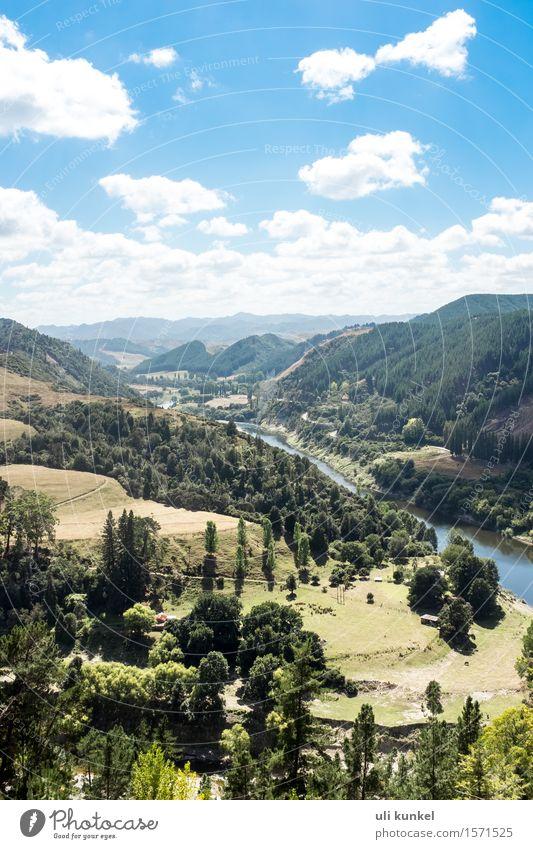 Whanganui River Road Himmel Natur Ferien & Urlaub & Reisen Pflanze Sommer Wasser Baum Landschaft Wolken Freude Ferne Wald Berge u. Gebirge Wiese Freiheit
