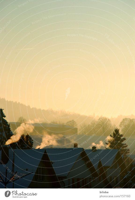Heizperiode Winter Emission Heizöl frieren kalt heizen Abgas Rauch Dorf Haus Stimmung Abend Dach Schweiz Cheminee Schornstein Giebelseite rauchsäule
