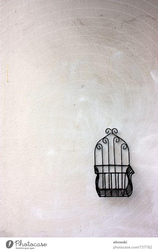 Blumentopfhalter Wand Haken Beton Putz trist minimalistisch Langeweile Balkon Metall Metallwaren Gitter Detailaufnahme Dekoration & Verzierung