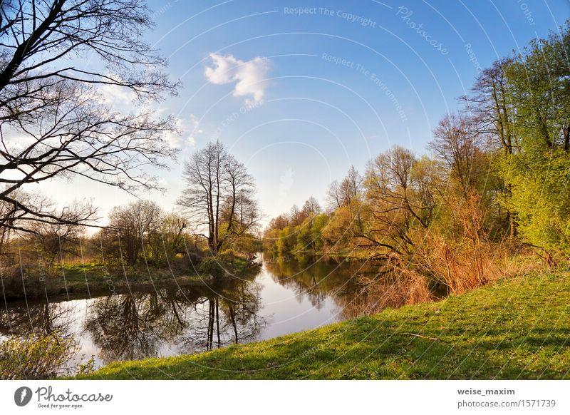 Sonnige Frühlingslandschaft. Fluss in einem grünen Wald Himmel Natur Ferien & Urlaub & Reisen Pflanze blau Farbe Baum Sonne Landschaft Umwelt Gras See