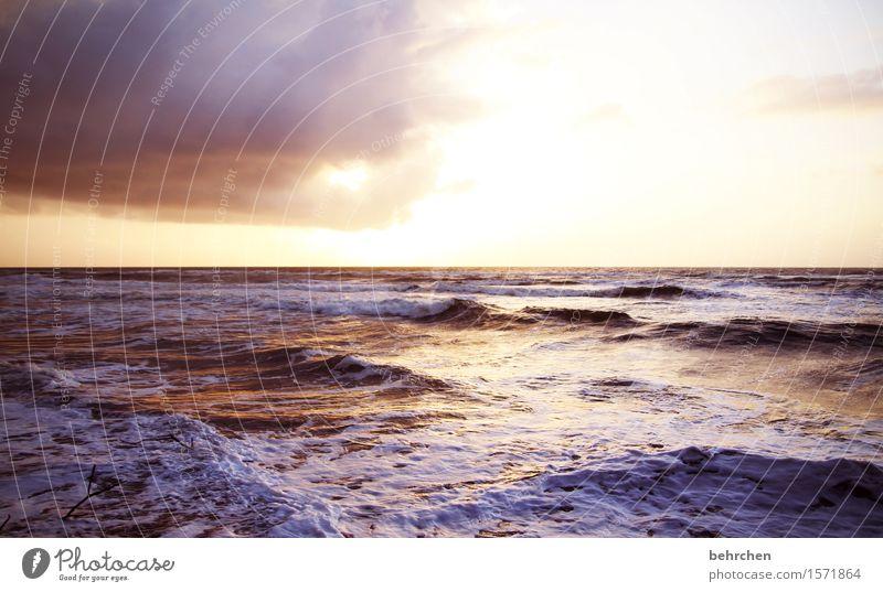 mehr meer Ferien & Urlaub & Reisen Tourismus Ausflug Abenteuer Ferne Freiheit Natur Himmel Wolken Horizont Wind Wellen Küste Strand Meer Karibisches Meer
