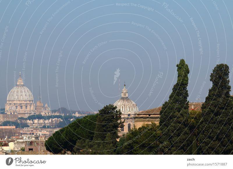 Über den Dächern von Rom Himmel Ferien & Urlaub & Reisen Stadt alt Himmel (Jenseits) Baum Haus Religion & Glaube Kirche Italien Turm historisch Hauptstadt
