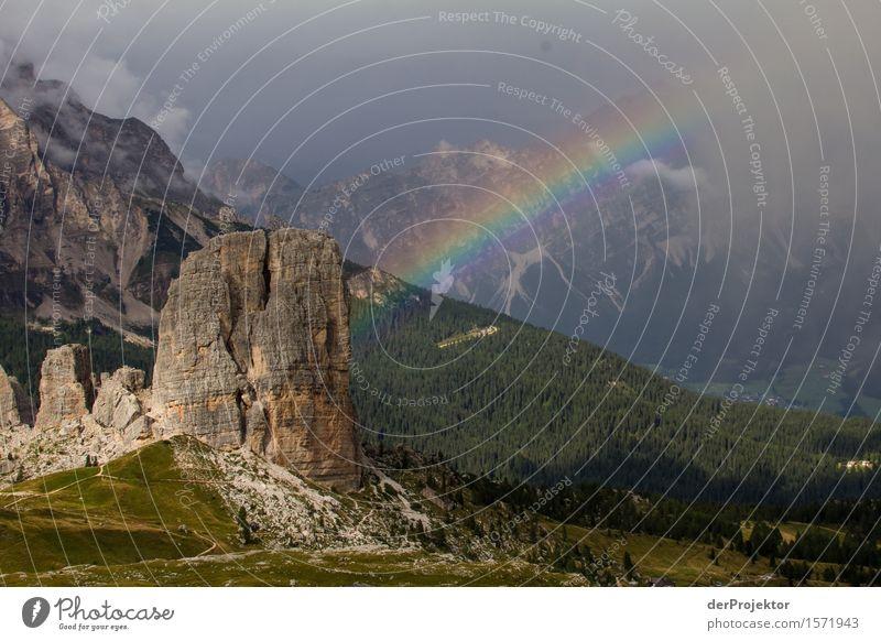 Farbenfrohes Unwetter Natur Ferien & Urlaub & Reisen Pflanze Sommer Landschaft Freude Ferne Wald Berge u. Gebirge Umwelt Freiheit Tourismus Felsen Regen Ausflug