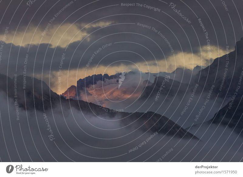 Ein bisschen Hoffnung Natur Ferien & Urlaub & Reisen Pflanze Sommer Landschaft Tier Ferne Berge u. Gebirge Umwelt Schnee Freiheit Felsen Tourismus wandern Kraft
