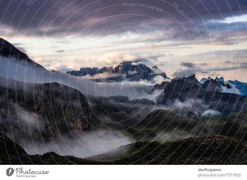Morgengrauen in den Dolomiten Natur Ferien & Urlaub & Reisen Pflanze Sommer Landschaft Tier Ferne Berge u. Gebirge Umwelt Gefühle Freiheit Felsen Tourismus