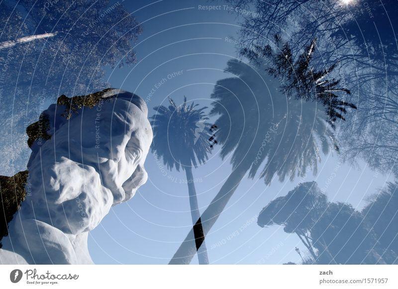 Ich seh Dich, vielleicht Mann Großvater Kopf Bart 1 Mensch 60 und älter Senior Skulptur Himmel Sonne Schönes Wetter Pflanze Palme Rom Italien Stadt Hauptstadt