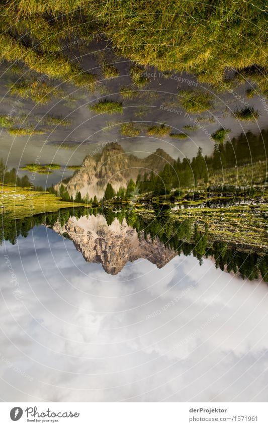 Spiegelberg 2 Natur Ferien & Urlaub & Reisen Pflanze Sommer Landschaft Tier Ferne Berge u. Gebirge Umwelt Wiese Freiheit See Felsen Tourismus wandern Ausflug