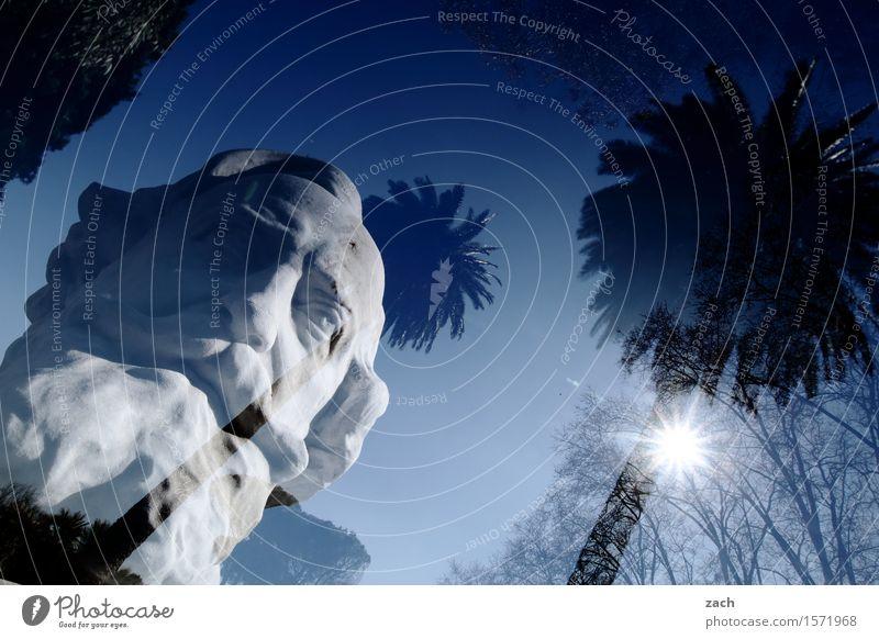 Betonkopf Großvater Kopf Bart 1 Mensch 60 und älter Senior Skulptur Himmel Sonne Schönes Wetter Pflanze Palme Rom Italien Stadt Hauptstadt Altstadt Stein alt