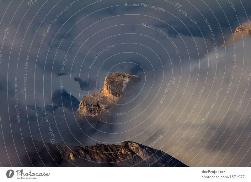 Goldenen Spitzen Natur Ferien & Urlaub & Reisen Pflanze Sommer Landschaft Tier Freude Ferne Berge u. Gebirge Umwelt Freiheit Felsen Tourismus wandern Ausflug