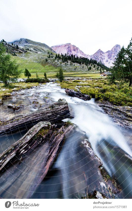 Alles im Fluss Natur Ferien & Urlaub & Reisen Pflanze Sommer Landschaft Tier Ferne Berge u. Gebirge Umwelt Leben Wiese Freiheit Felsen Tourismus Feld wandern