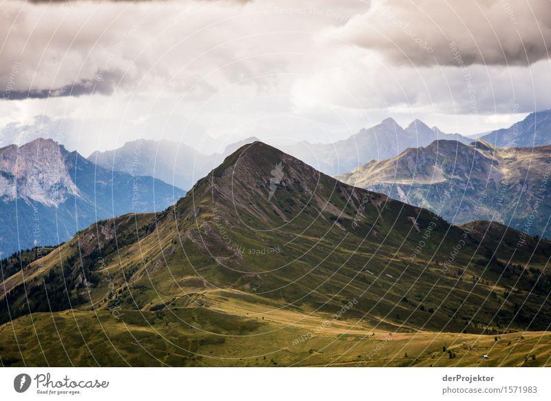 Der Erleuchtete Natur Ferien & Urlaub & Reisen Pflanze Sommer Landschaft Tier Ferne Berge u. Gebirge Umwelt Wiese Freiheit Felsen Regen Tourismus wandern