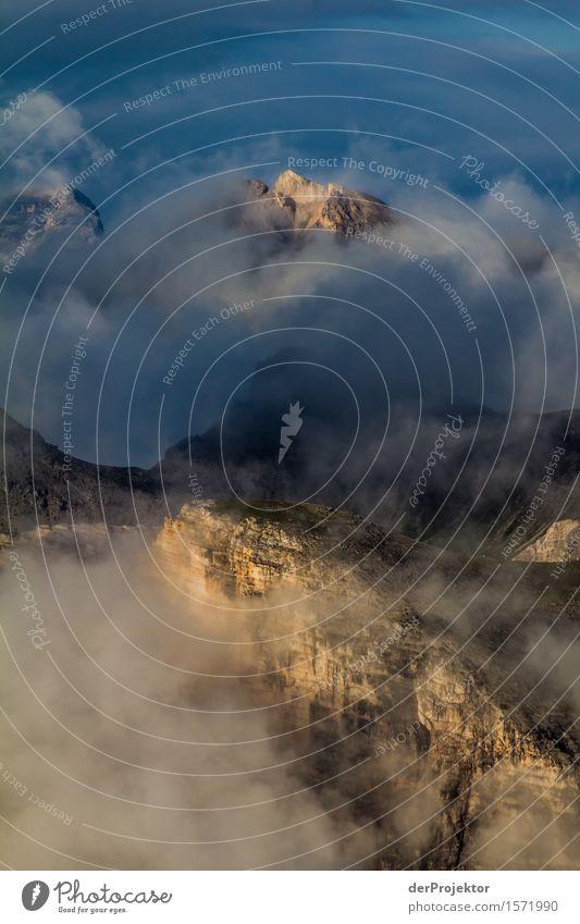 Spots für die Berge Natur Ferien & Urlaub & Reisen Pflanze Sommer Landschaft Tier Ferne Berge u. Gebirge Umwelt Freiheit Felsen Tourismus Nebel wandern Kraft