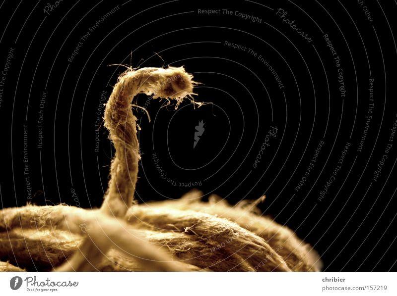 Schlapperklange Seil gefährlich bedrohlich Schnur beweglich Haushalt Wolle wickeln binden schlangenförmig Knäuel befestigen abwickeln Klapperschlangen