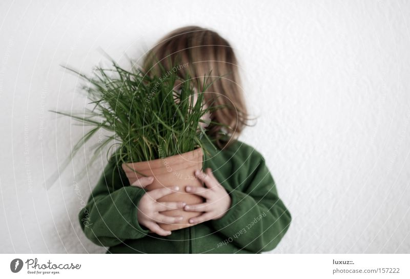 Frühling im T(K)opf Kind Schnittlauch verstecken Gesundheit Ernährung grün Geruch Gastronomie Ernte Bioprodukte festhalten Zutaten