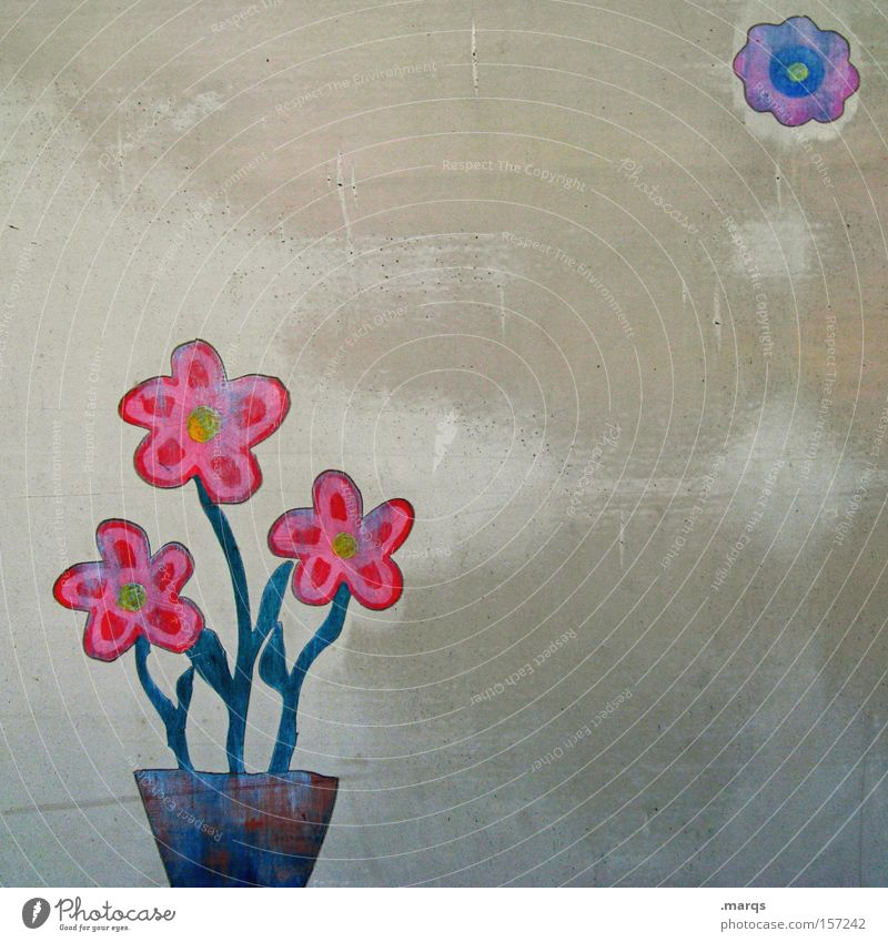 Floret Blume Pflanze rot Wand Blüte grau Graffiti Metall Geburtstag Lifestyle Fröhlichkeit ästhetisch Jubiläum Freizeit & Hobby Dekoration & Verzierung Lebensfreude