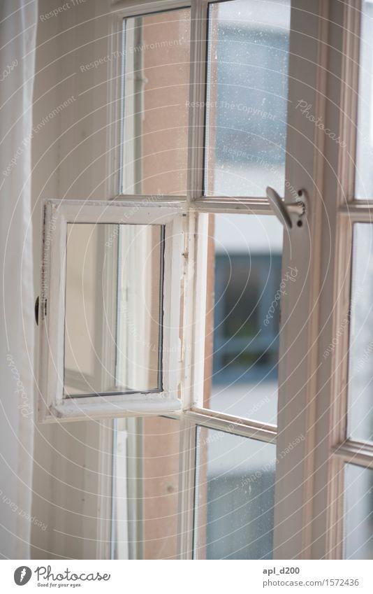 Fensterladen alt weiß Haus grau offen ästhetisch einzigartig entdecken