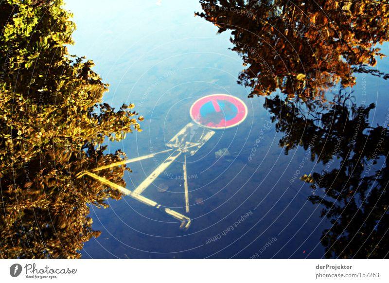 Parken verboten Wasser Himmel blau Herbst Schilder & Markierungen Frankreich Verbote untergehen Colmar
