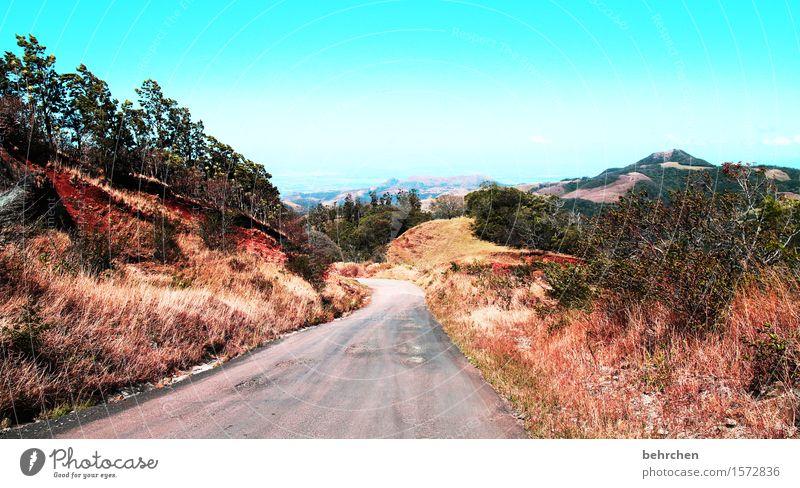 wenn einer eine reise tut, dann tut er was erleben Himmel Ferien & Urlaub & Reisen schön Landschaft Ferne Berge u. Gebirge Straße Wege & Pfade Gras