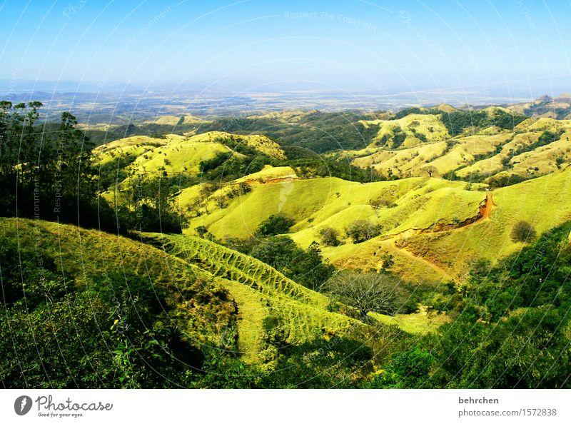unterwegs... Himmel Natur Ferien & Urlaub & Reisen Pflanze schön grün Sommer Baum Landschaft Ferne Wald Berge u. Gebirge Frühling Gras Freiheit Horizont