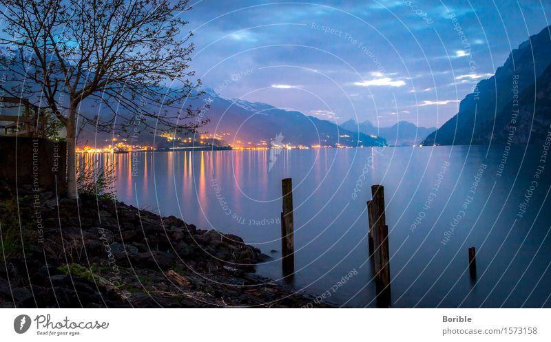 Abend am See Umwelt Natur Landschaft Urelemente Wasser Himmel Wolken Nachthimmel Herbst Wetter Baum Alpen Küste Seeufer Menschenleer genießen hängen