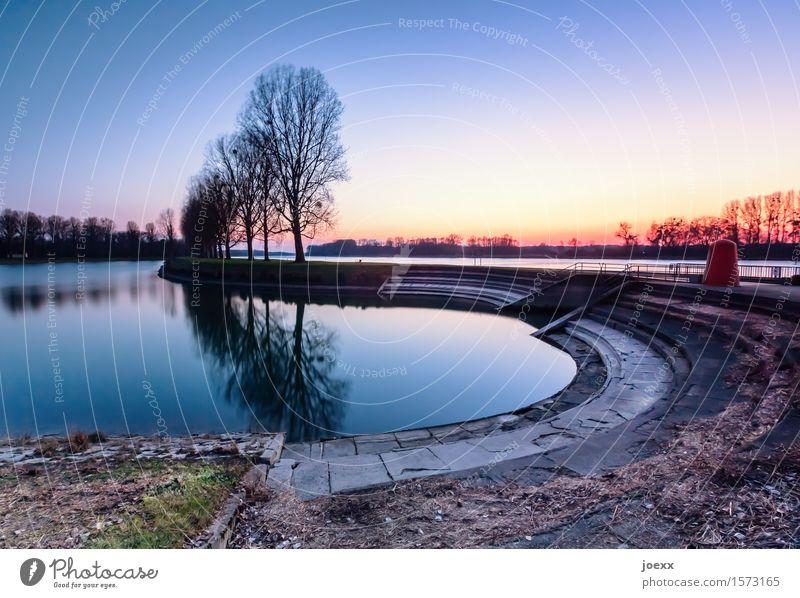 Erholung Wasser Himmel Sonnenaufgang Sonnenuntergang Schönes Wetter Baum Seeufer blau mehrfarbig gelb orange Horizont Idylle ruhig Farbfoto Außenaufnahme