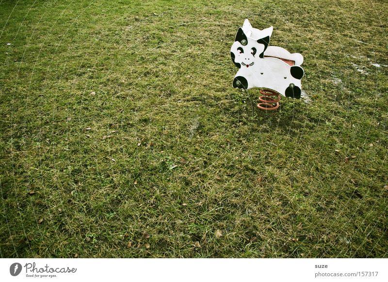 Katzenkuh Freude Einsamkeit Wiese Spielen Gras Katze Freizeit & Hobby leer trist Rasen Kindheit Spielzeug Kuh Metallfeder Spielplatz Erinnerung