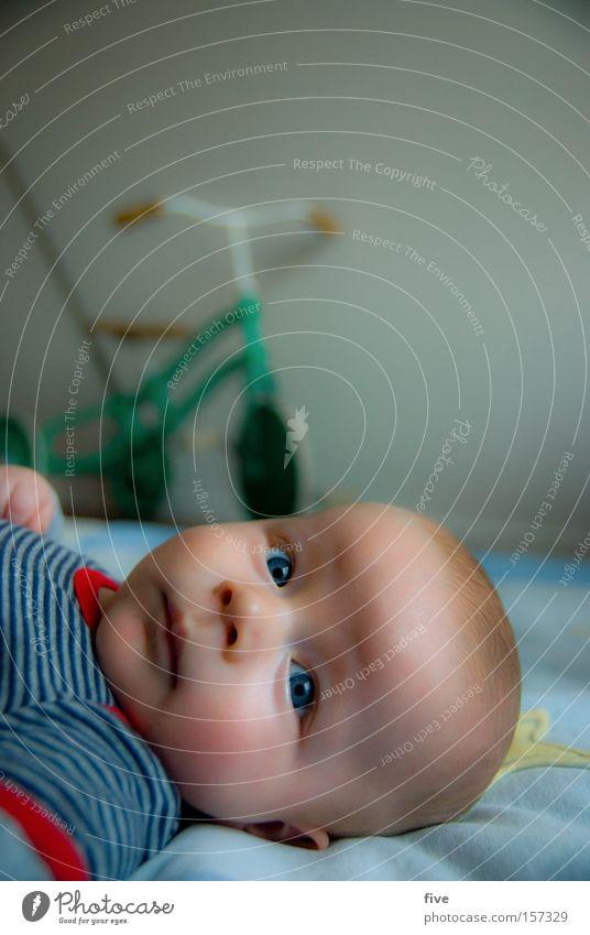 warten aufs radfahren... Kind Gesicht Auge Spielen Kopf Raum Zufriedenheit Baby liegen Kleinkind Dreirad