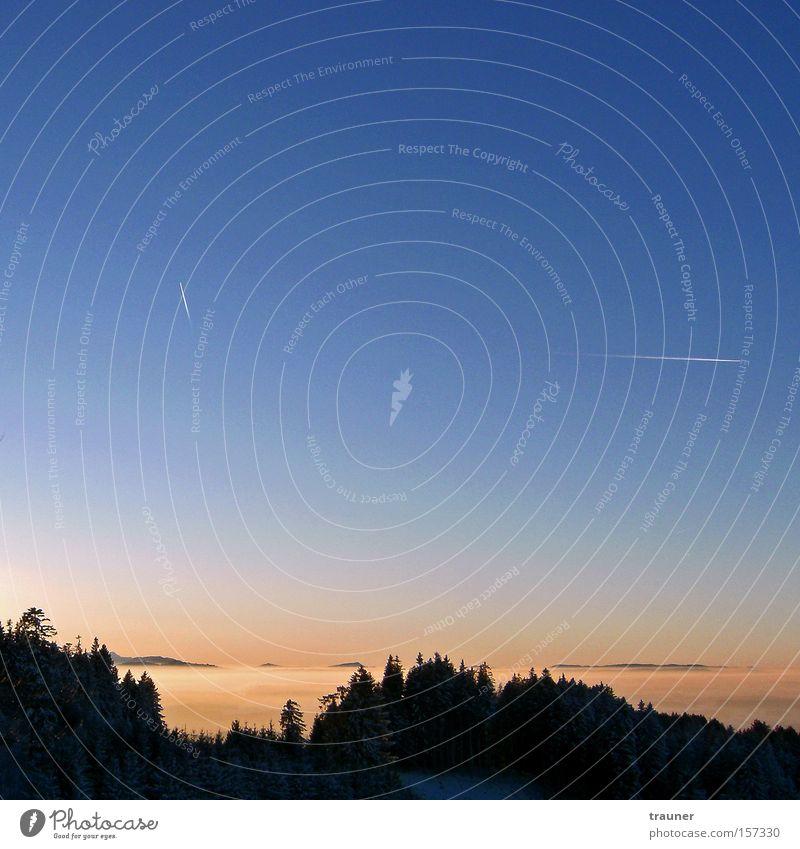 Nebelblut Himmel blau rot Winter Wald Berge u. Gebirge Flugzeug Abenddämmerung Allgäu Kondensstreifen Farbverlauf Niederschlag Alpenvorland