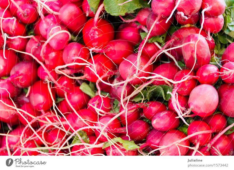 Hintergrund mit frischem rotem Rettich Gemüse Vegetarische Ernährung Blatt rosa Lebensmittel Gesundheit roh organisch Farbfoto