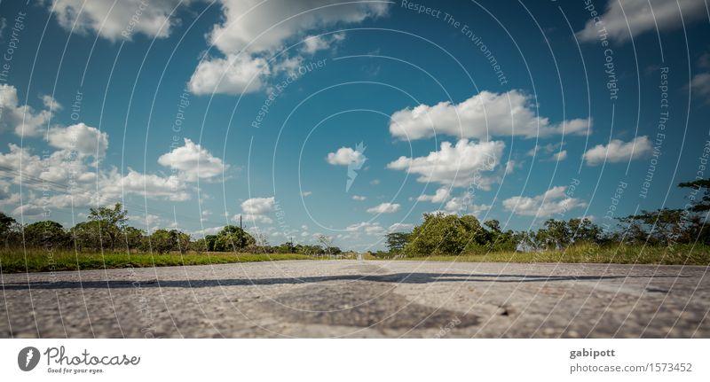 Unter den Wolken Ferien & Urlaub & Reisen Tourismus Ausflug Abenteuer Ferne Freiheit Sommer Sommerurlaub Sonne Himmel Horizont Klima Schönes Wetter Kuba