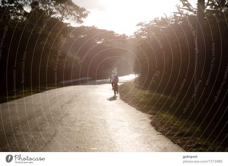 Kuba | Land Natur Ferien & Urlaub & Reisen Erholung Ferne Wald Straße Leben Gefühle Wege & Pfade Gesundheit natürlich Zeit Freiheit Tourismus braun Stimmung