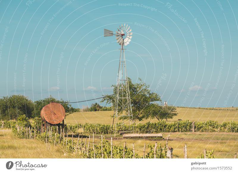 Kubanische Prärie Himmel Natur Ferien & Urlaub & Reisen Landschaft Ferne Umwelt Wege & Pfade Freiheit Horizont Tourismus Feld Energiewirtschaft Idylle Ausflug