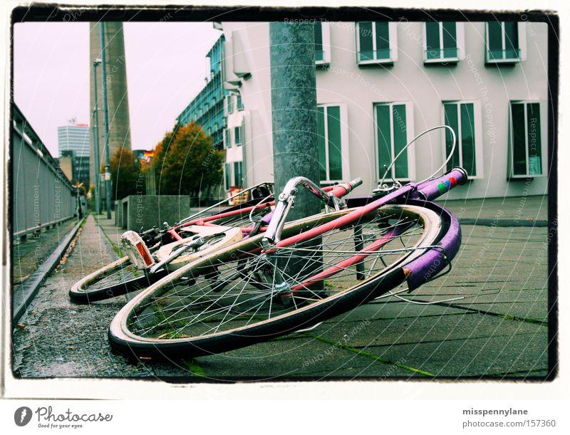 farbtupfer Fahrrad rosa Beton violett Rad Verkehrswege Düsseldorf Rhein Uferpromenade