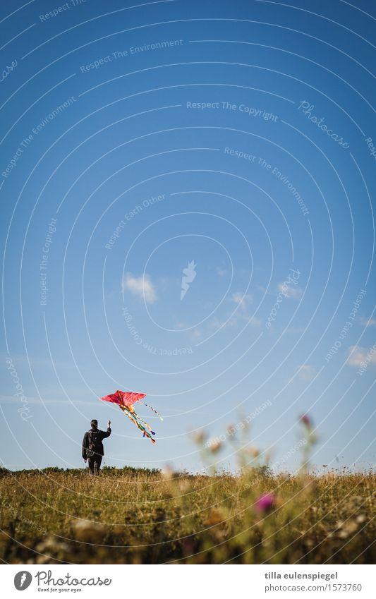 Flugstunde Freizeit & Hobby maskulin Leben 1 Mensch Natur Herbst Wiese Bewegung festhalten fliegen Unendlichkeit blau Abenteuer Einsamkeit Erholung Freiheit